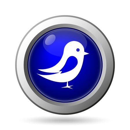 tweet: Bird icon. Internet button on white background.