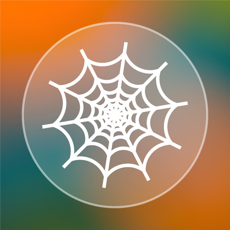 Spider web icon. Internet button on colored  background. photo