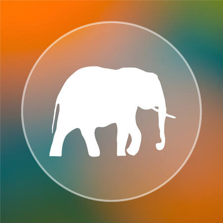 endanger: Elephant icon. Internet button on colored  background.