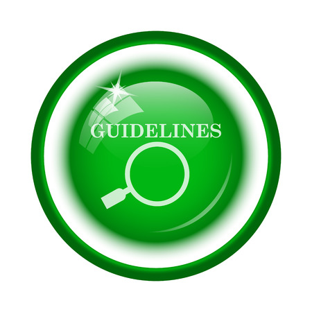 guidelines: Guidelines icon. Internet button on white background.