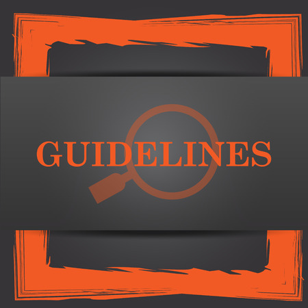 guidelines: Guidelines icon. Internet button on grey background. Stock Photo