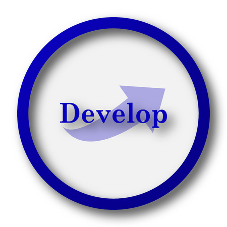 develop: Develop icon. Blue internet button on white background. Stock Photo