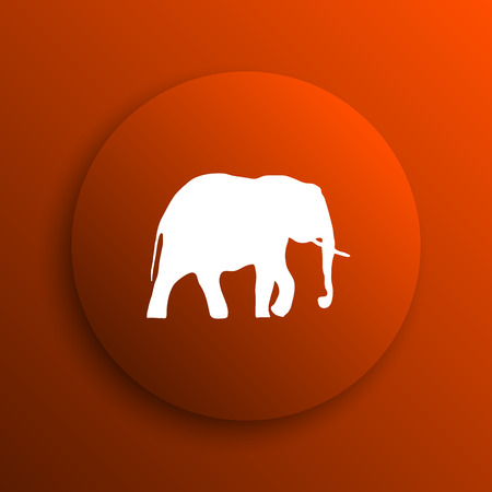 endanger: Elephant icon. Internet button on orange background