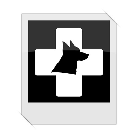 veterinary icon: Veterinary icon within a photo on white background Stock Photo