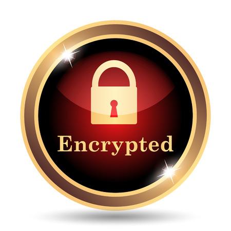 internet icon: Encrypted icon. Internet button on white background. Stock Photo