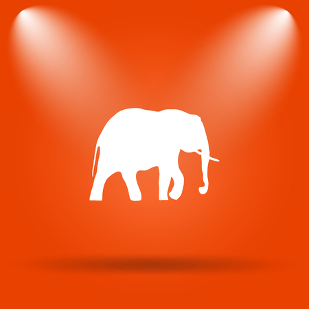 endanger: Elephant icon. Internet button on orange background.