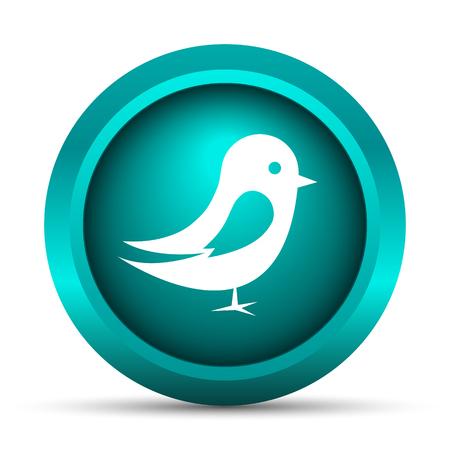 chirp: Bird icon. Internet button on white background.