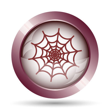 web background: Spider web icon. Internet button on white background. Stock Photo