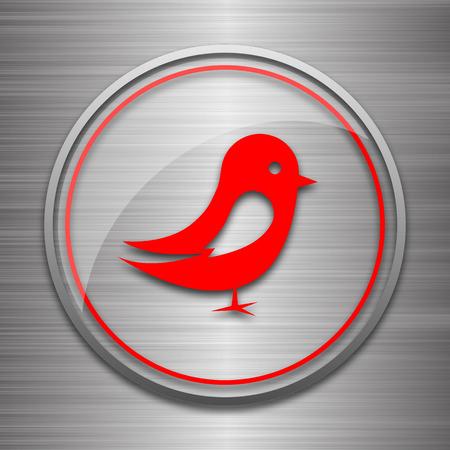chirp: Bird icon. Internet button on metallic background.