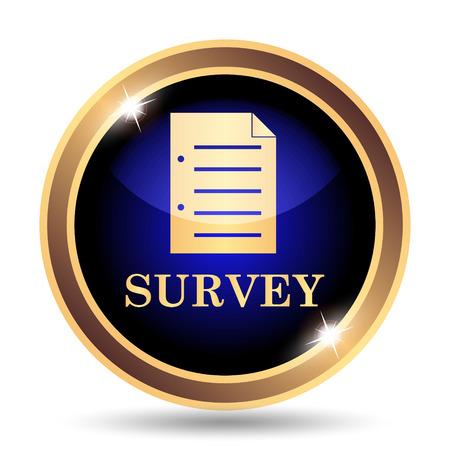 validate: Survey icon. Internet button on white background.