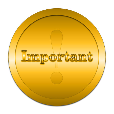 important: Important icon. Internet button on white background.