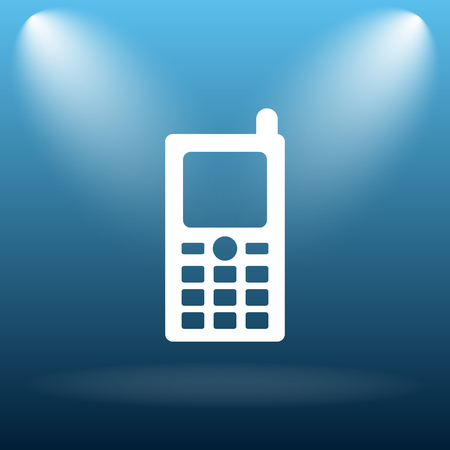 phone button: Mobile phone icon. Internet button on blue background.