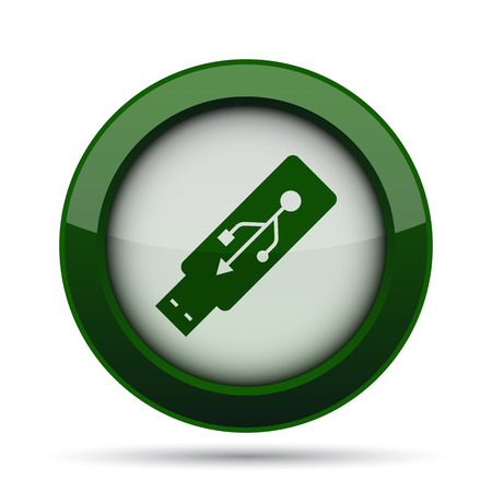 usb pendrive: Usb flash drive icon. Internet button on white background. Stock Photo