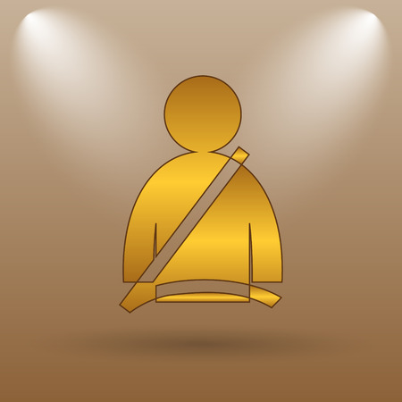 precautions: Safety belt icon. Internet button on brown background.
