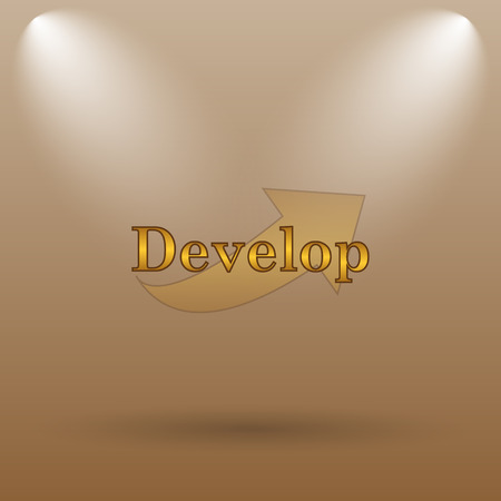 develop: Develop icon. Internet button on brown background. Stock Photo