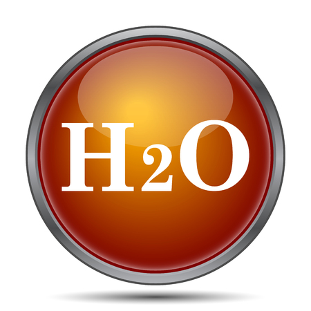 laboratory label: H2O icon. Internet button on white background.