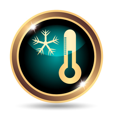 coldness: Snowflake with thermometer icon. Internet button on white background.