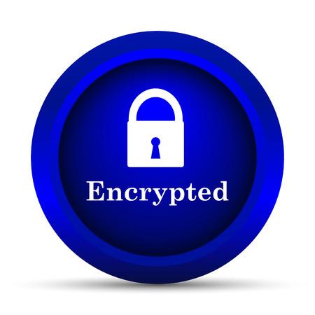 Encrypted icon. Internet button on white background. Stock Photo