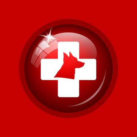 veterinary icon: Veterinary icon. Internet button on red background. Stock Photo
