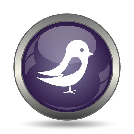 tweet icon: Bird icon. Internet button on white background.