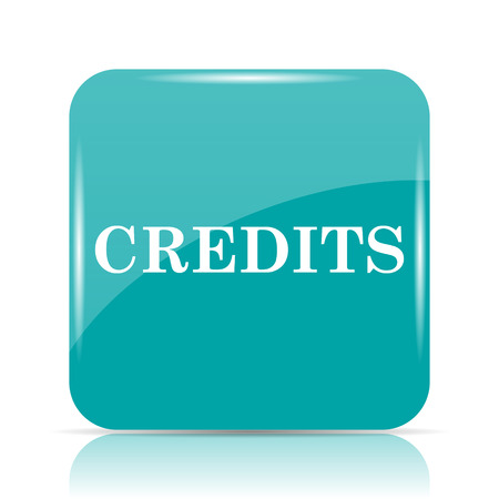 cyan business: Credits icon. Internet button on white background.