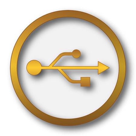 USB icon. Internet button on white background. Stock Photo