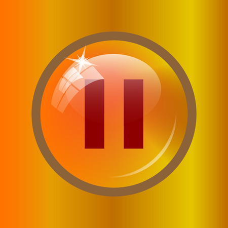 Pause icon. Internet button on colored background.