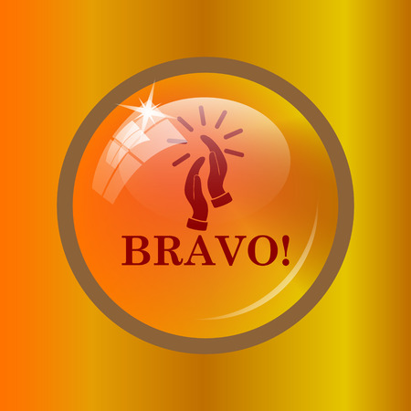 Bravo icon. Internet button on colored background. Stock Photo