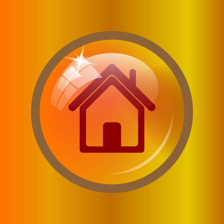 Home icon. Internet button on colored background.
