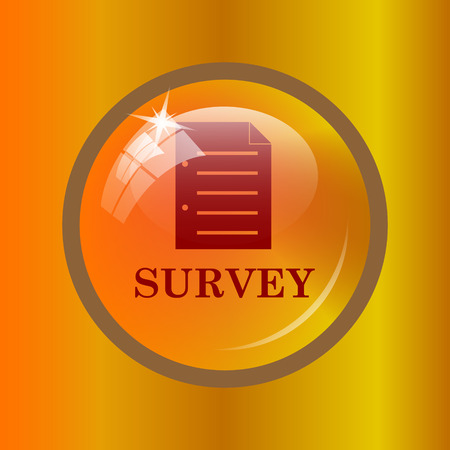 Survey icon. Internet button on colored background.