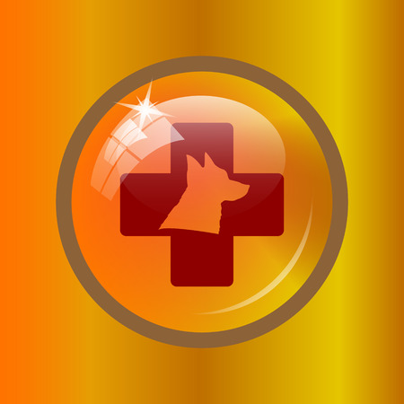 veterinary icon: Veterinary icon. Internet button on colored background.