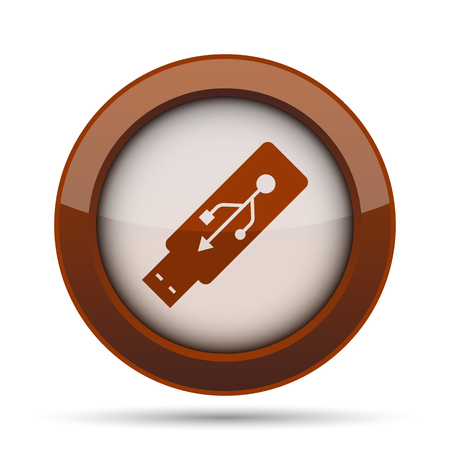 Usb flash drive icon. Internet button on white background. Stock Photo