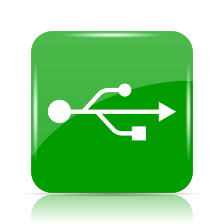 usb memory: USB icon. Internet button on white background. Stock Photo