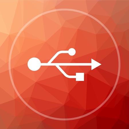 pendrive: USB icon. USB website button on red low poly background.