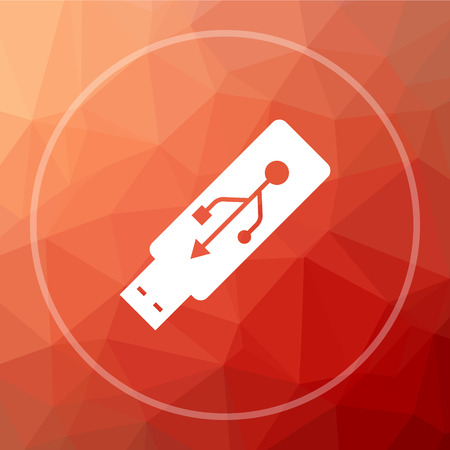 Usb flash drive icon. Usb flash drive website button on red low poly background.