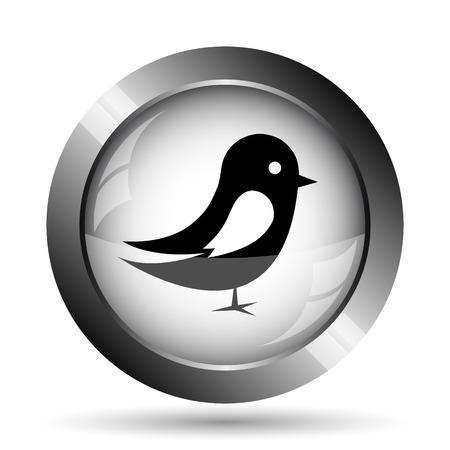 tweet icon: Bird icon. Bird website button on white background.