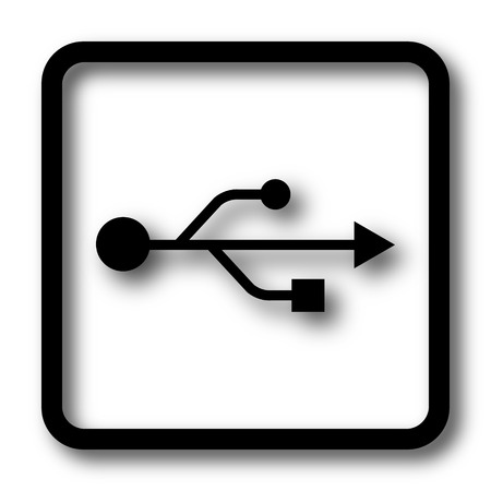 pendrive: USB icon, black website button on white background.