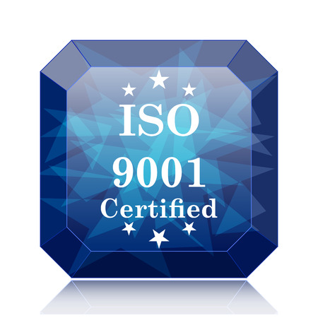 ISO9001 icon, blue website button on white background.