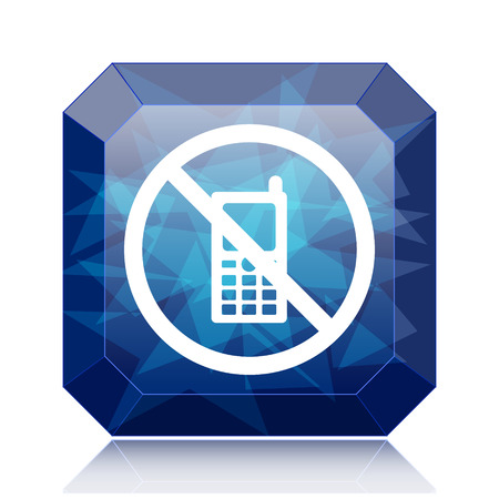 use regulation: Mobile phone restricted icon, blue website button on white background.