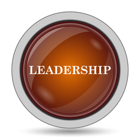 superintendence: Leadership icon, orange website button on white background.