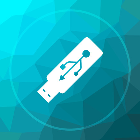 Usb flash drive icon. Usb flash drive website button on blue low poly background.