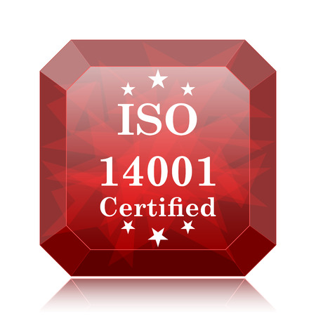 ISO14001 icon, red website button on white background.