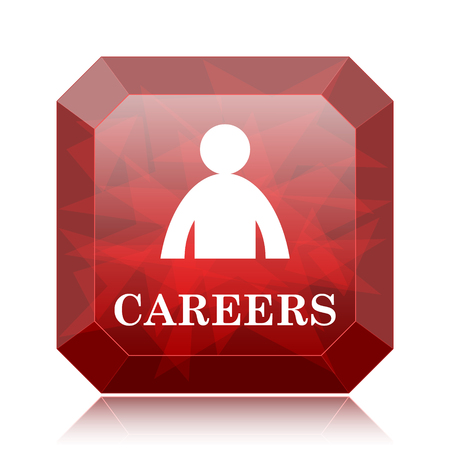 Careers icon, red website button on white background.