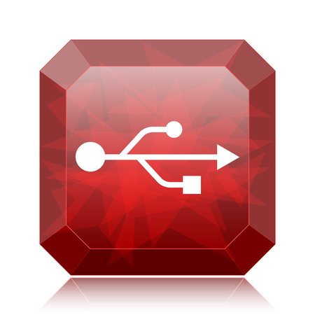 pendrive: USB icon, red website button on white background.
