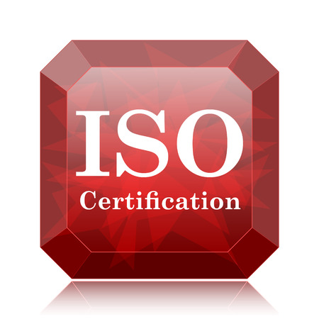 ISO certification icon, red website button on white background.