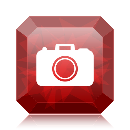 Photo camera icon, red website button on white background.
