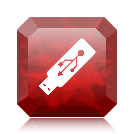Usb flash drive icon, red website button on white background.