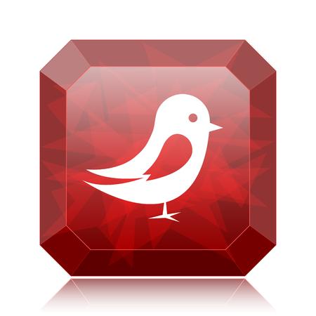 chirp: Bird icon, red website button on white background.