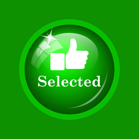 Selected icon. Internet button on green background.
