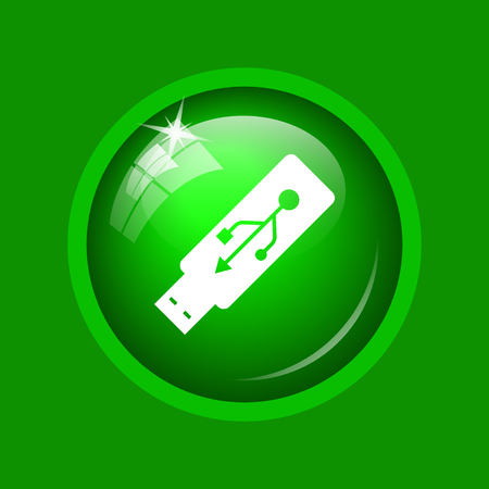 Usb flash drive icon. Internet button on green background.
